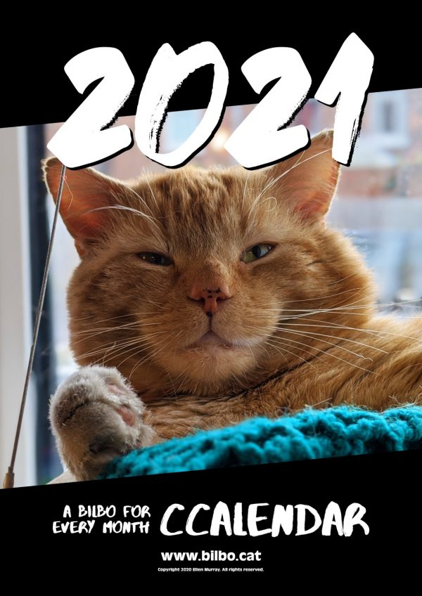 Front page of the Bilbo 2021 Calendar, showing him sitting on his window bed, smiling into the camera.